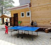 Игра в настольный теннис